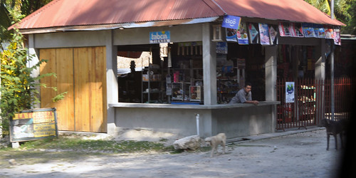 Guatemalan dogs