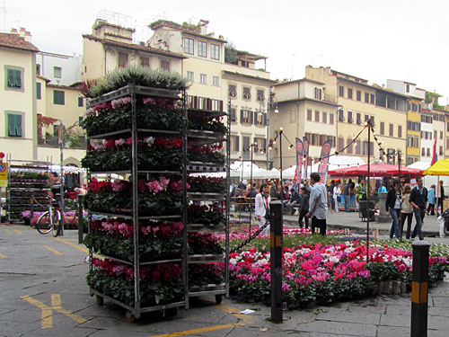 A flower market in Florence, Italy