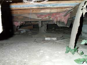 [photo of the crawlspace beneath the trailer house]