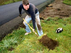 [photo of me digging the grave for the skunk]