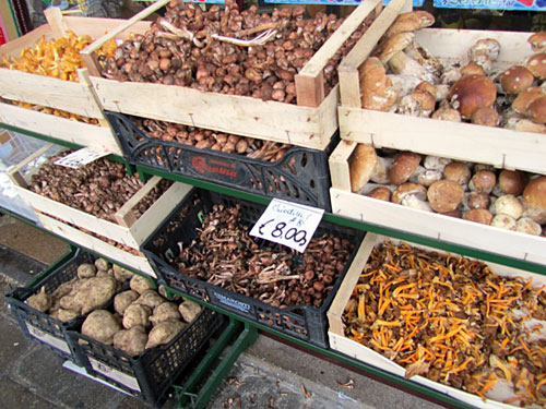 Mushrooms at the market in Padua